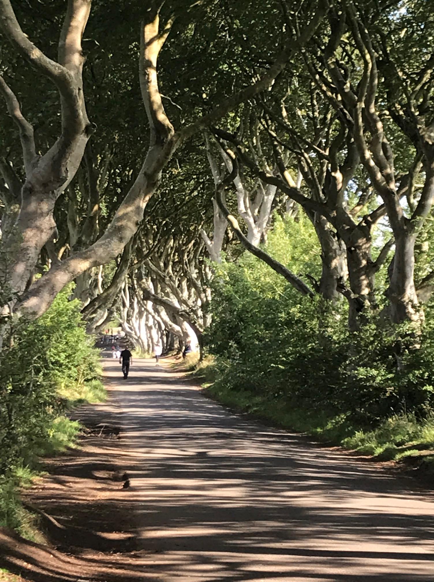 trail in n ireland